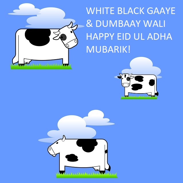 Funny Eid Mubarak Jokes Messages
